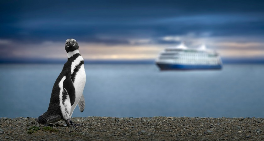 Luxury and Expedition cruises - unforgettable adventures for any cruise lover
