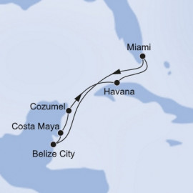 Caribbean and Cuba and Antilles MSC Cruises Cruise