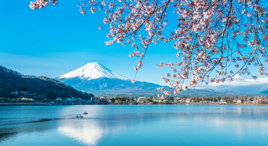 Cherry Blossom Cruises: See Asia in Bloom