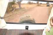 Bobo Campers ZA Discoverer 4 - Auto camper hire south africa
