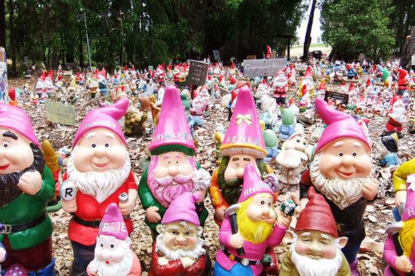 The gnomes of Gnomesville in the Ferguson Valley of Western Australia