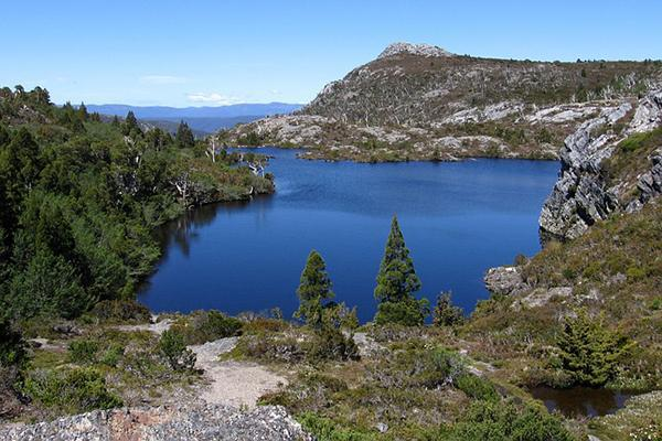 A tree-filled mountain track overlooking a lake in Tasmania, Australia