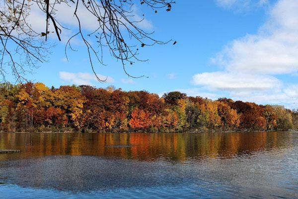 The trees adorn their Autumn colours on the Fox River in Appleton, Wisconsin
