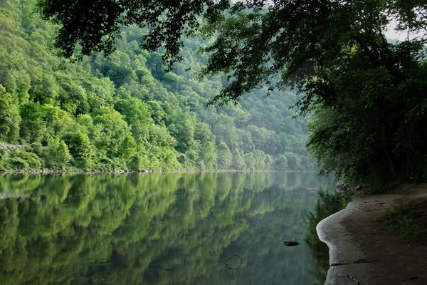 The still waters of the Delaware River reflect the lush green trees near Wilmington, Delaware